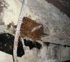 Rim Joist and Sill Repair